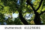 light pouring down through a...   Shutterstock . vector #611258381