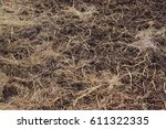 Dry Straw  Dry Grasses  Hay On...