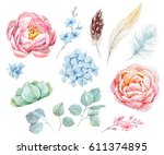watercolor floral set. peonies... | Shutterstock . vector #611374895