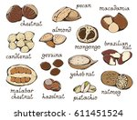 nuts set  colorful food... | Shutterstock . vector #611451524