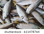 Fresh Mackerel Fish At The...