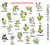 Best Natural Herbs For...