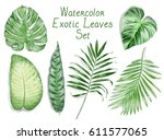 watercolor exotic leaves pattern | Shutterstock . vector #611577065