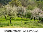 Small photo of spring,ain,france