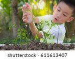 seed and planting concept with... | Shutterstock . vector #611613407