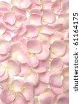 Stock photo pink rose petals seamless background 61164175