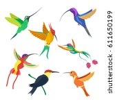 small bird hummingbird set... | Shutterstock . vector #611650199
