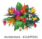 composition from tropical... | Shutterstock .eps vector #611699261
