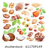 hand drawn watercolor... | Shutterstock . vector #611709149