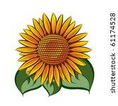 eps10 vector sunflower head... | Shutterstock .eps vector #61174528