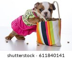 Stock photo cute puppy with paws inside a big purse full of kibble 611840141