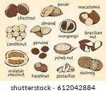 nuts food set  big color... | Shutterstock . vector #612042884