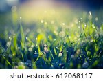 morning nature meadow.... | Shutterstock . vector #612068117