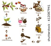 coffee processing step by step... | Shutterstock .eps vector #612087941
