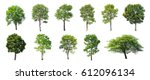 Stock photo isolated trees on white background the collection of trees 612096134