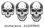 monochrome illustration of... | Shutterstock . vector #612099845