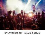 Crowd At Concert   Summer Musi...