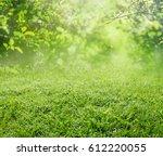 spring grass background | Shutterstock . vector #612220055