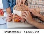 curious children studying brain ... | Shutterstock . vector #612310145