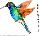 hummingbird watercolor... | Shutterstock . vector #612316271