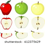 apple vector variety of...