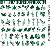 herbs and spices icons | Shutterstock .eps vector #612409709