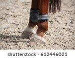 chestnut horse legs close up... | Shutterstock . vector #612446021