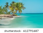 Stock photo palm trees at a beach in samana dominican republic 612791687