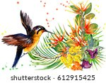 beautiful tropical nature.... | Shutterstock . vector #612915425