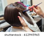 the hairdresser paints the... | Shutterstock . vector #612945965