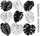 set of tropical leaves... | Shutterstock .eps vector #612946301