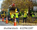 equipment and workers at tree removal site - stock photo