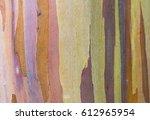 Colorful Bark  Isolated Close...