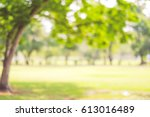 blur park with bokeh light... | Shutterstock . vector #613016489