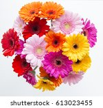 Bunch Of Multi Coloured Gerberas