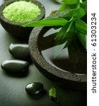 spa | Shutterstock . vector #61303234