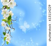 spring gentle blue background.... | Shutterstock . vector #613114229