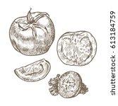 tomato  tomato slices  cucumber.... | Shutterstock .eps vector #613184759