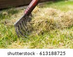 cleaning up the grass with a... | Shutterstock . vector #613188725