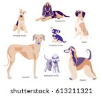 vector illustration of dogs... | Shutterstock .eps vector #613211321