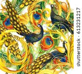 peacock  golden lace watercolor ... | Shutterstock . vector #613231217