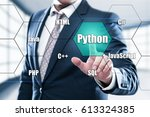 python programming language web ... | Shutterstock . vector #613324385