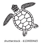 turtle | Shutterstock .eps vector #613400465