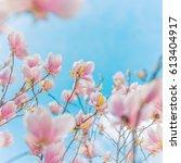 amazing blooming nature... | Shutterstock . vector #613404917