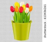 tulip in pot  | Shutterstock . vector #613436261