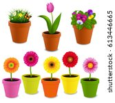 flowers in pot collection with... | Shutterstock .eps vector #613446665