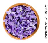 Wild Violet Flowers In Wooden...