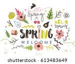 spring elements for your design. | Shutterstock .eps vector #613483649