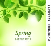 natural green eco background...   Shutterstock .eps vector #613536965