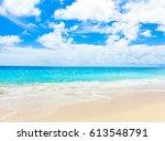 shore palms landscape  | Shutterstock . vector #613548791